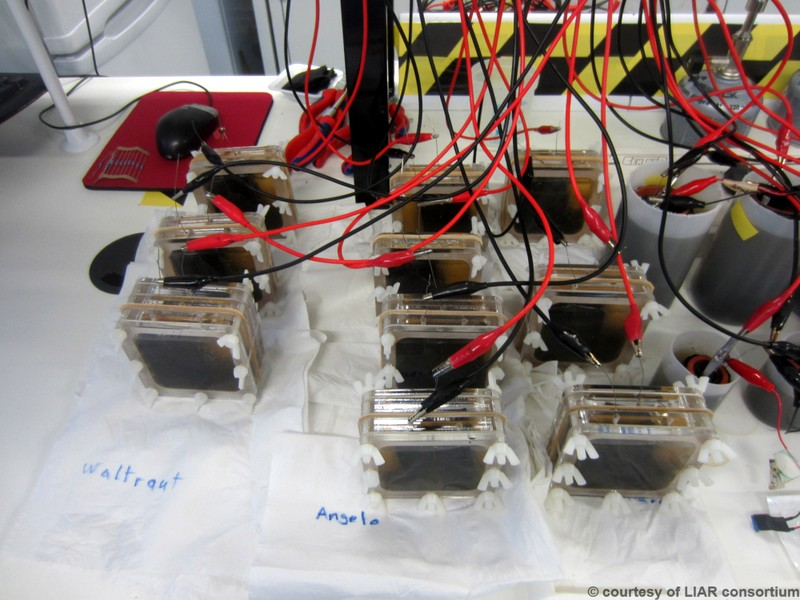 LIAR_Project_MicrobialFuelCell_real_picture2