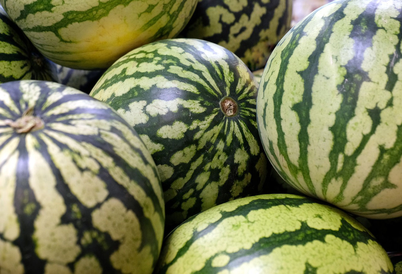 water-melons-4235567_1280