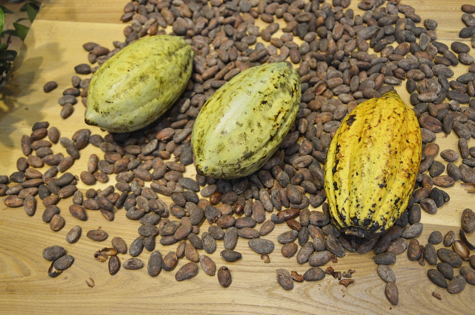 cocoa-beans-373813_960_720