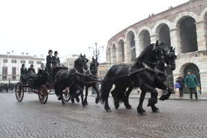 Fieracavalli foto carrozza